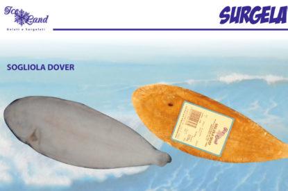 Sogliola Dover