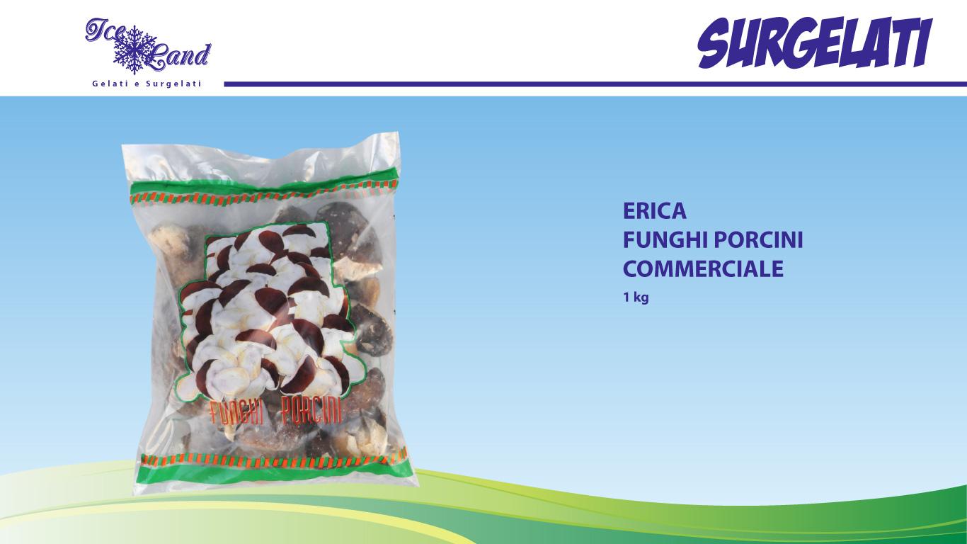 Funghi Porcini Commerciale