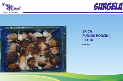 Funghi Porcini Extra Catering