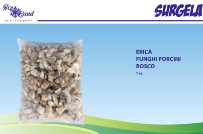 Funghi Porcini Interi Bosco